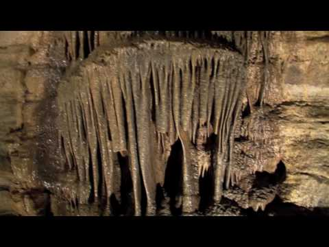 Forestville/Mystery Cave State Park Virtual Tour