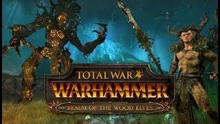Total War: Warhammer II Лесные эльфы #3 - Война против Орков+планы на развитие? DUO