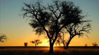 Tosca - Busenfreund [Philippe Lussan & Camel Hinds Ver.] [Suzuki In Dub]