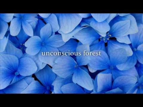 unconscious forest/GONTITI