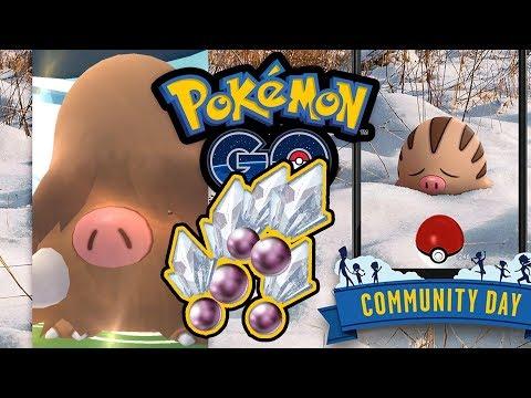 Mamutel kommt! Quiekel Community Day verschenkt Sinnoh-Steine | Pokémon GO Deutsch #860
