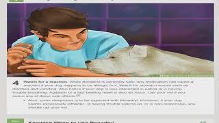 Wikihow Dog Training
