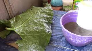 як зробити вазу з листя