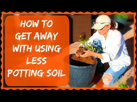 Container Planting Trick For Saving Money On Potting Soil