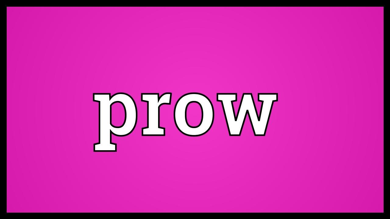 what is the meaning of prow