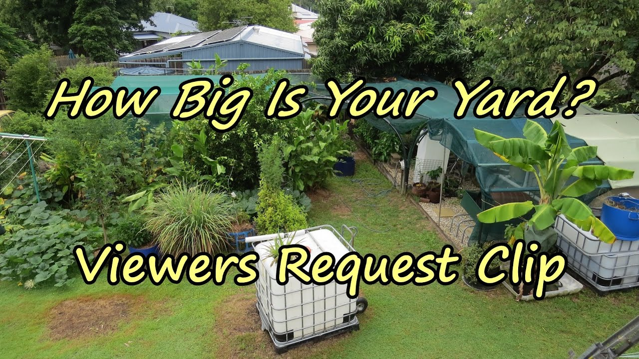 "how big is your yard "" viewer request backyard farm walk through"