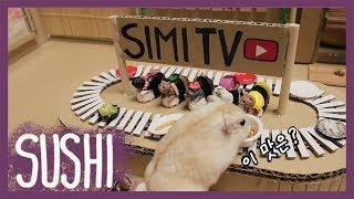햄스터 전용 회전초밥집 (hamster sushi train)