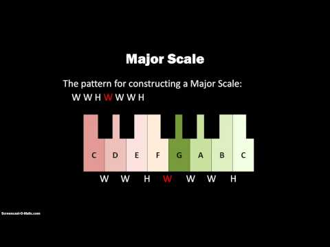 203 Tetrachords And Major Scales