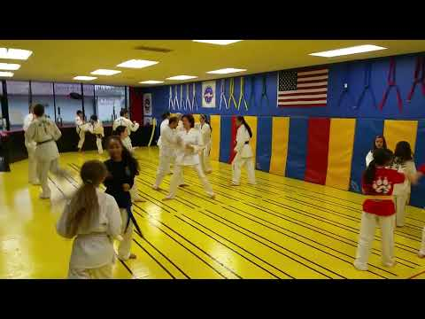 Mountain View Martial Arts & Fitness Demonstrating Non Contact Free Sparrring