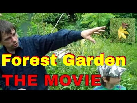 Forest Garden THE MOVIE #permaculture #agroforestry #sustainability Martin Crawford