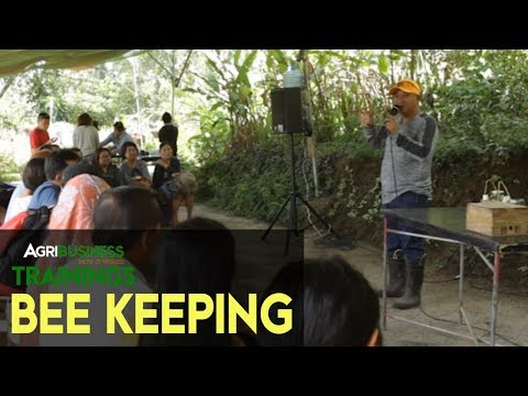 How To Start an Agribusiness: Bee Keeping | Milea Bee Farm | Agribusiness Trainings