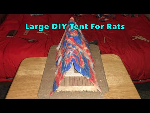 Large DIY Tent For Rats