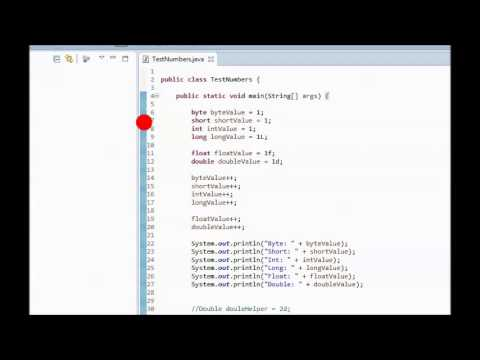 Java Tutorial 9 - Example of Primitive Types