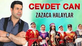 zazac halaylar Cevdetcan  - Aymiri Resimi