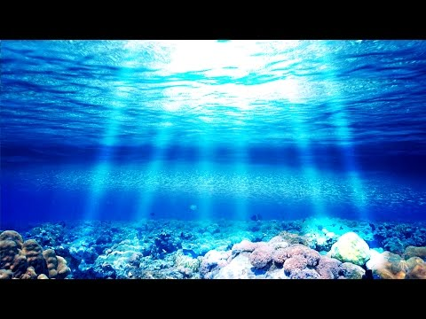 "Theta Healing Meditation Music: ""Aqueous Light"" - Wellness, Health, Focus, Spiritual Awareness"