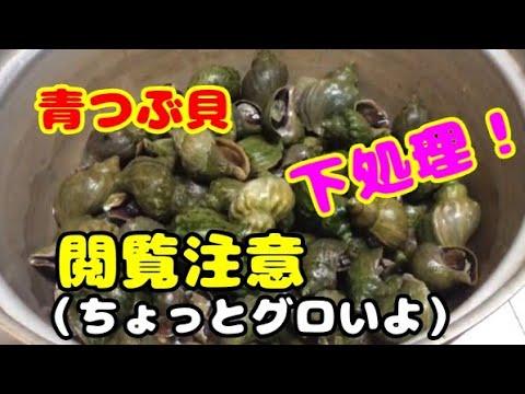 唾液腺 つぶ 貝
