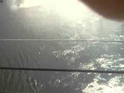 ยิงปลาแม่น้ำท่าจีน