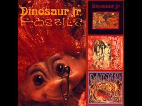 Dinosaur Jr - Fossils (full album)