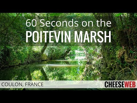 60 Seconds on the Poitevin Marsh in Coulon, France