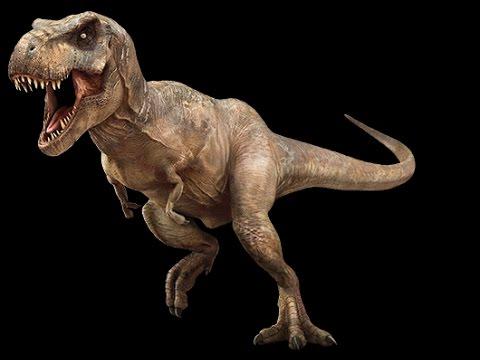 Картинки по запросу Тираннозавр Рекс
