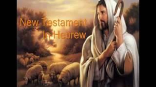 5. Hebrew Audio Bible New Testament- Matthew Chapters 10-11