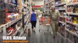 Lots Of Off Leash Heeling!   Corgi/chihuahua Mix   Dog Training Atlanta