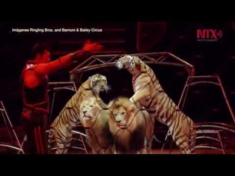 Circo Ringling Bros cierra sus puertas tras 146 años