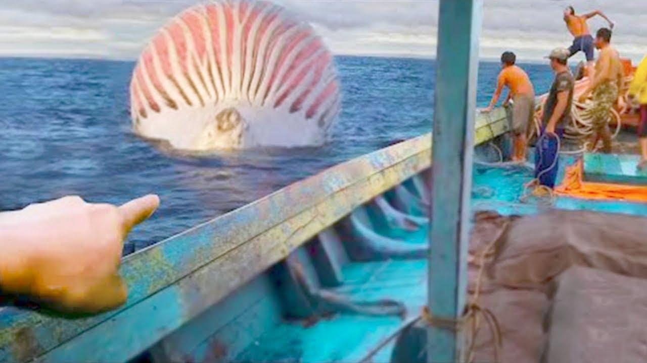 ocean alien chases me..