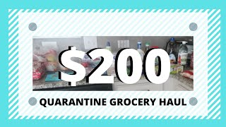 Quarantine Grocery Haul | Walmart Grocery Haul | The Cool Mom