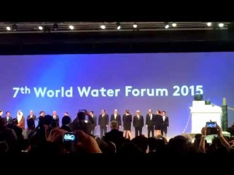 An accident during the grand opening of the 7th World Water Forum