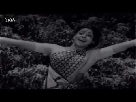 Ethu Salethila Kappu Video Song | Muthana Muthallavo Movie | Tamil Movies