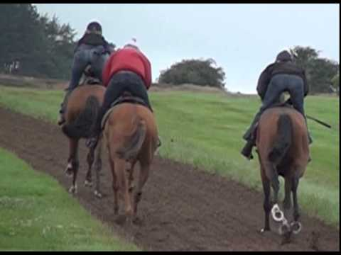Middleham Racehorse Trainers