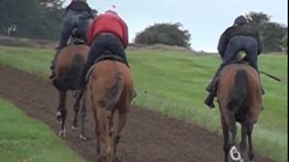 Middleham Racehorse Trainers