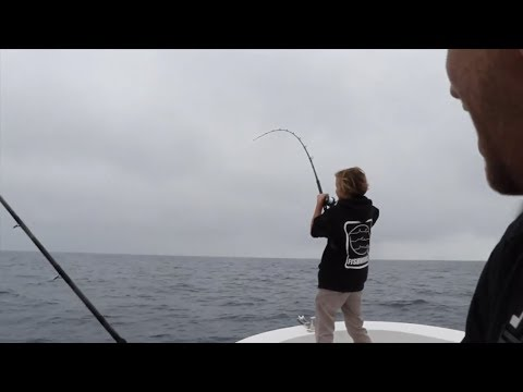 Kelp Patty YELLOWTAIL & Surface Iron Fishing (Feat. Western Waters)