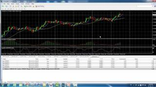 How to hit 100% accuracy in Forex Investment spending 3 minutes a day ONLY