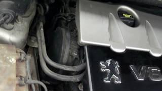 Peugeot 407 Coupe 2.7 HDI V6 - praca silnika