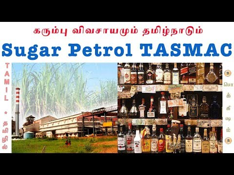 Sugar vs Petrol vs குடிமகன்கள் | Molasses Alcohol Explained | Tamil | Pokkisham | Vicky | TP