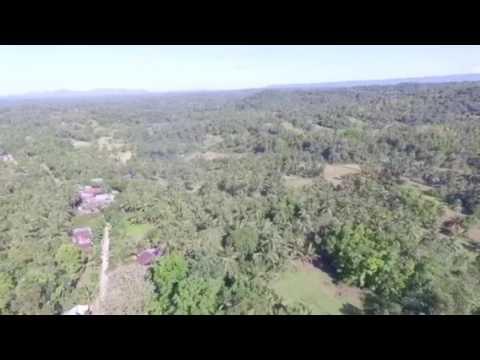 Drone sample video in san miguel bohol