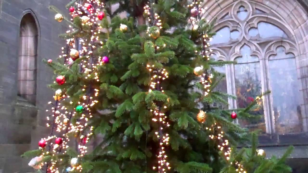 Christmas Tree St Andrews Fife Scotland - YouTube