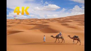 "#023 ""Sahara Desert, Morocco"" in 4K (サハラ砂漠・モロッコ) 世界一周6カ国目"