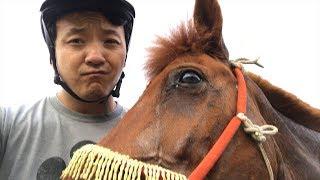 Nomadic Life in Mongolia & VENOMOUS Snake Bite