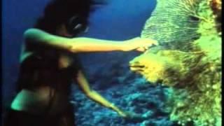 вокруг света(1989г)-кадры шокировшие советского зрителя!