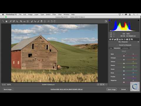 GreyLearning Webinar 2017 06 21 Creating Great Black and White Images