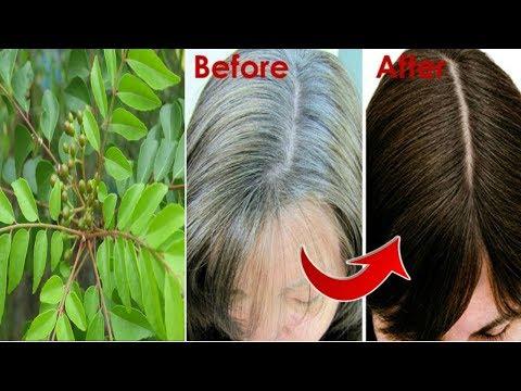 Use Only These Leaves- Turn WHITE Hair (Grey Hair) to BLACK Hair Naturally-Priya Malik