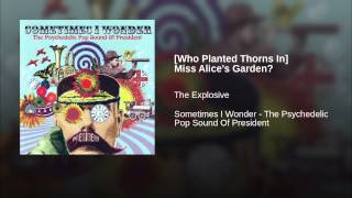 [Who Planted Thorns In] Miss Alice