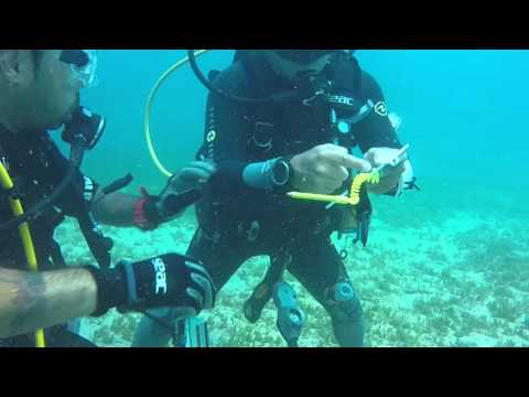 Underwater Navigation. Padi AOW in training. Playa de Coco, Costa Rica