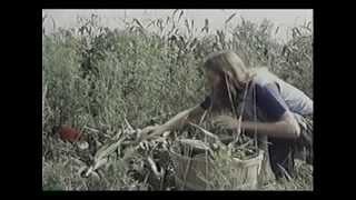 American Commune Trailer