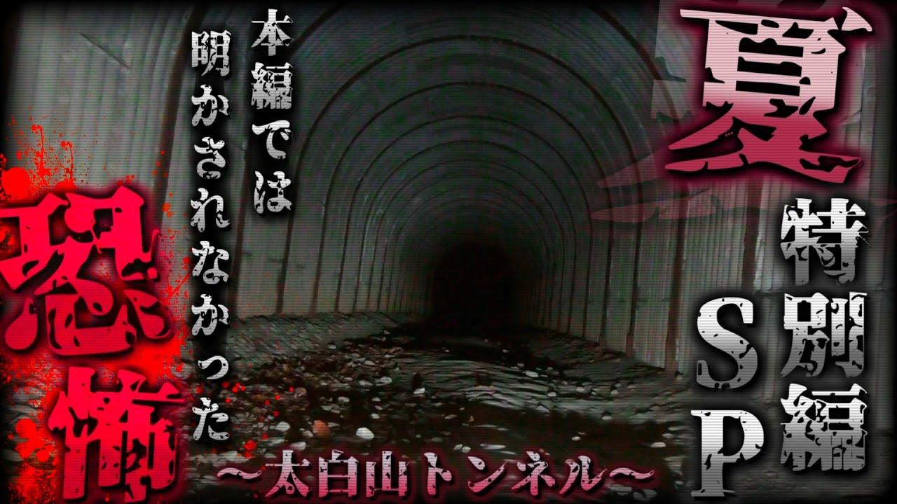 【夏の特別編SP】本編では明かされなかった最恐の映像 -太白山トンネル編-【宮城県 心霊スポット】