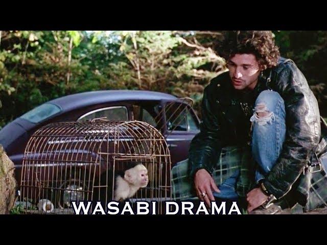【哇薩比抓馬】男子被猴子吐了一臉口水,沒想到口水上攜帶非洲傳染病,差點把整個美國都弄垮了《危機總動員》Wasabi Drama