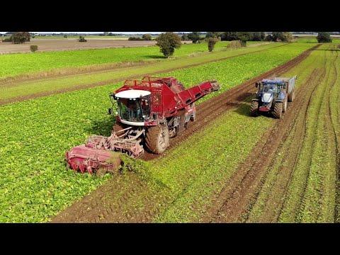 Holmer Light Traxx Exxact Beet Harvester